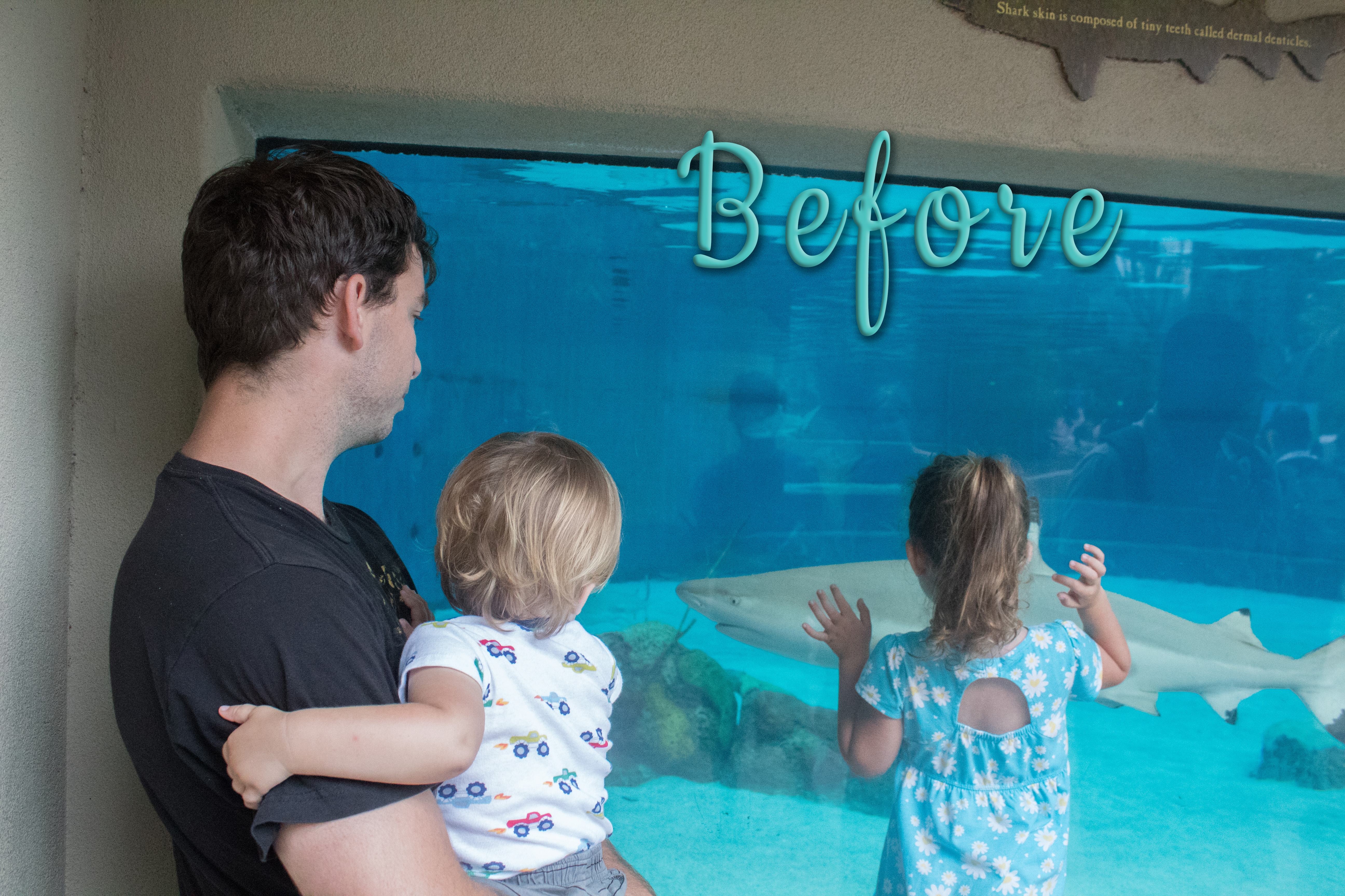 Photo of two kids and their dad staring at a shark tank.